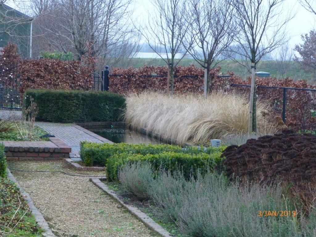 Overzicht paul de jong tuinen for Tuin en vijver