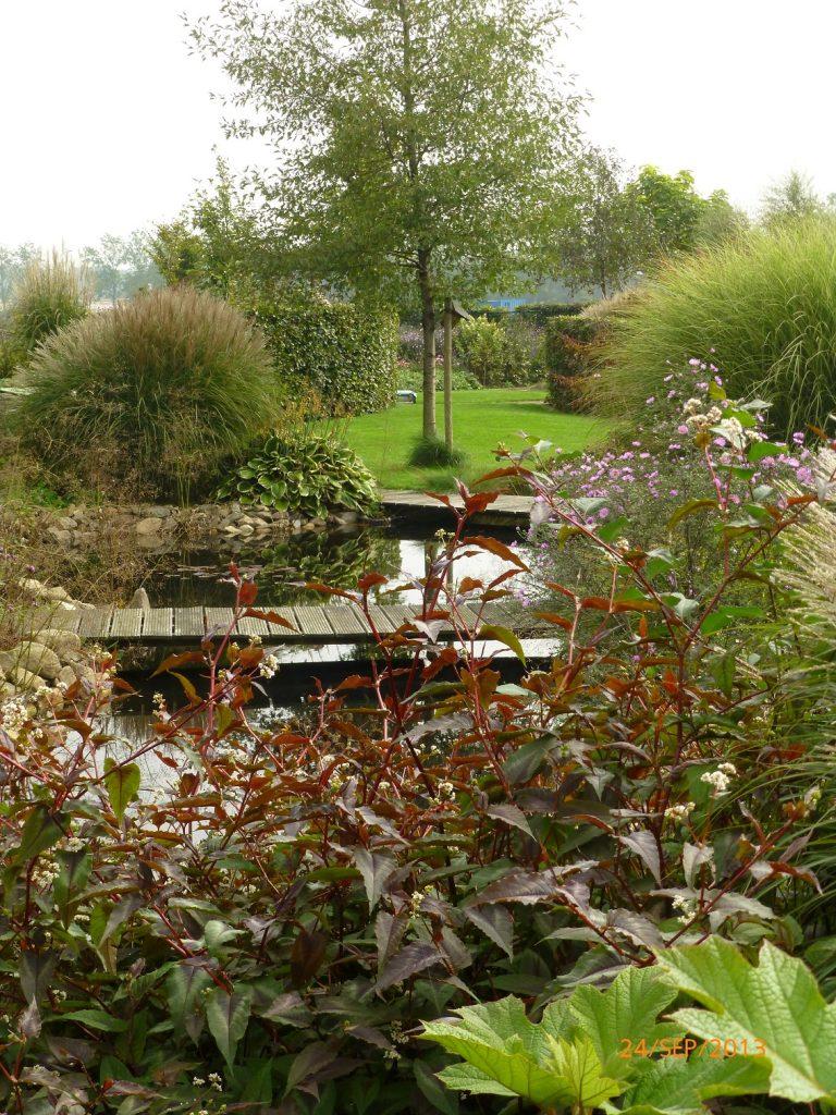 Beplanting uit eigen kwekerij paul de jong tuinen for Natuurvijver maken